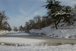 Frozen Pond on the River Lin